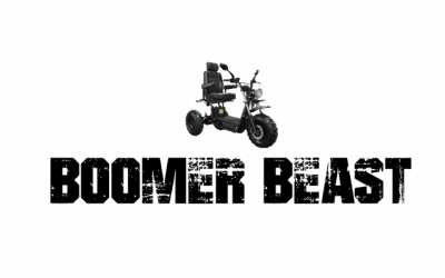 Daymak Boomer Beast – Part 1: Research & Purchase